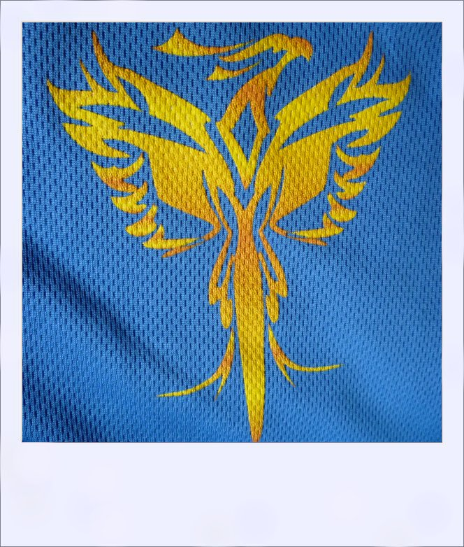 Phoenix long sleeve recumbent cycle jersey - design close-up