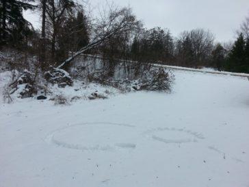 Snow - logo